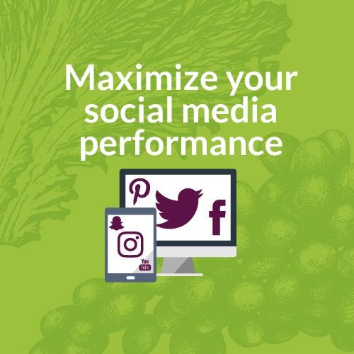 2017 Social Media Assessment
