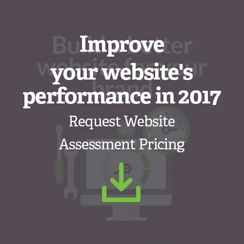 2017 Website Assessment
